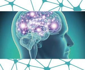 Neurofeedback, psicología, psicoterapia, terapia, psicólogos Zaragoza, Manuel Olalla, Neurofeedback Zaragoza, Manuel Olaya