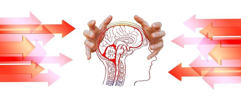 Diagnóstico, psicología, psicoterapia, terapia, psicólogos Zaragoza, Manuel Olalla, Neurofeedback Zaragoza, Manuel Olaya