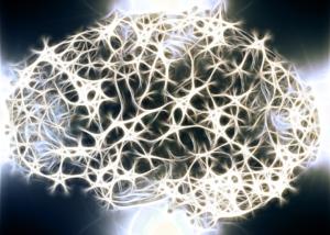 Plasticidad neuronal, neuroplasticidad, Neurofeedback, neuropsicología, tratamiento por neurofeedback, Neurofeedback Zaragoza, Manuel Olalla, Manuel Olaya